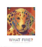 What Fire? Art Print