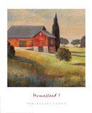 Homestead I Art Print