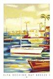 Bay Breeze I Art Print
