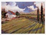 Pastoral Fields II Art Print