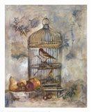 Song Bird I Art Print