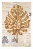 Harvest IV Art Print