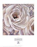 Bloomers II Art Print