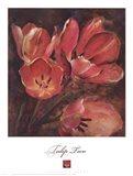 Tulip Two Art Print