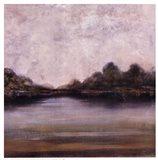 Santee River I Art Print