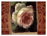 Classic White Rose Art Print