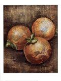 Seraser Fruit IV Art Print