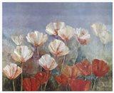 Blushing Poppies Art Print