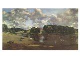 Wivenhoe Park Essex Art Print
