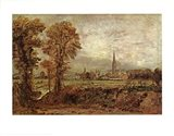 Salisbury Cathedral from the Meadow Art Print