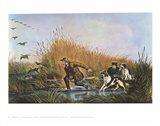 Wild Duck Shooting Art Print