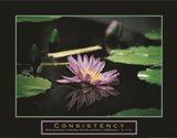 Consistency - Pond Flower Art Print