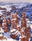 Turned to Stone Bryce Art Print