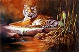 Golden Raja Art Print