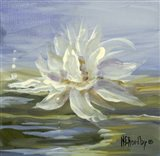 Water Lillies 3 Art Print