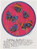 Callithea Saphhira Art Print