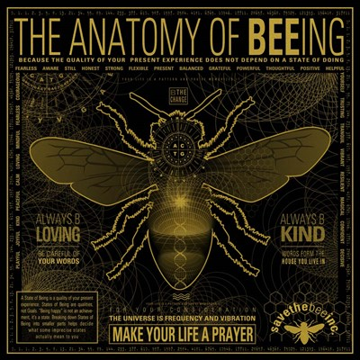 Anatomy 0F Bee-Ing