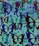 Butterfly Patterns Art Print