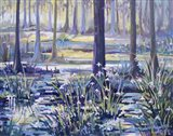 Blue Bayou Swamp Art Print