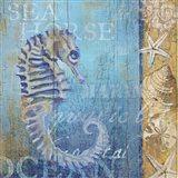 Sea Horse and Sea Art Print