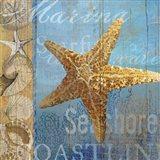 Starfish and sea Art Print