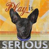 Dog Days - Liittle Black Pup Art Print