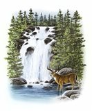 Stag Waterfall Art Print