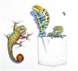 Three Chameleons Art Print