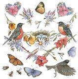 Robins Art Print