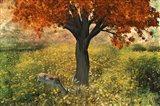 Nature Color Art Print