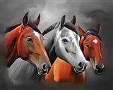 Horses Portrait Art Print