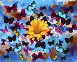 Daisy And Butterflies Art Print