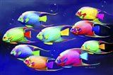 Colorful Fishes 2 Art Print