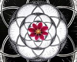 Geometry Flower Art Print