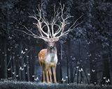 Magical Deer Art Print