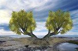 Twin Tree Art Print