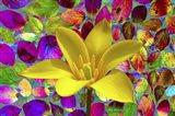 Color Explosion 16 Art Print