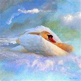 Beautiful Swan 2A Art Print