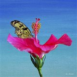 Butterfly And Flower 3X Art Print