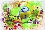 Spring Bird 2 Art Print