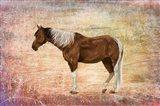 Horse Image Art Print