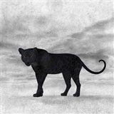 The Jaguar 2 Art Print