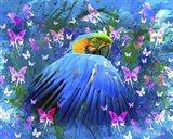 Bird In Color Art Print