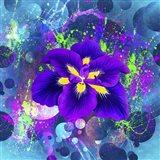 Flower Design 4AX Art Print
