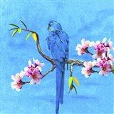 Spring Bird And Flower Art Print
