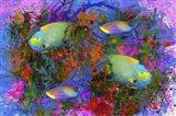 Fish Art 3 Art Print
