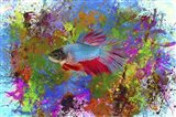 Fish Art 5 Art Print
