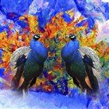 Bird Collection 26 Art Print