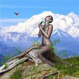 Bird Collection 33 Art Print
