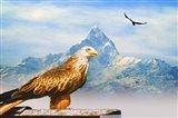 Bird Collection 34 Art Print